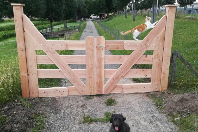 zorgnijverij hek